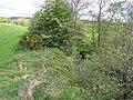 Ballinamullan - geograph.org.uk - 432976.jpg