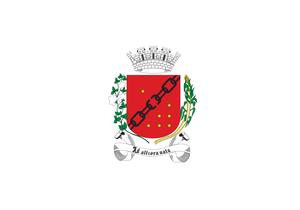 Sete Lagoas - Image: Bandeira Sete Lagoas