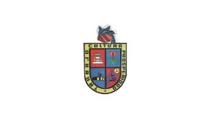 Atizapán de Zaragoza - Image: Bandera de Atizapán de Zaragoza