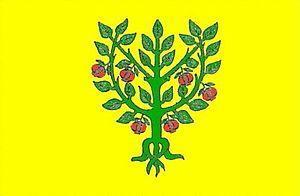 Granyena de les Garrigues - Image: Bandera granyera garrigues