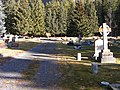 Banff Cemetery.JPG