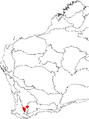 Banksia oligantha map.png