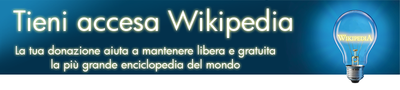 Banner itwiki fundraising 2010.png