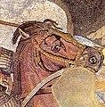 BattleofIssus333BC-mosaic-detail1-crop.jpg