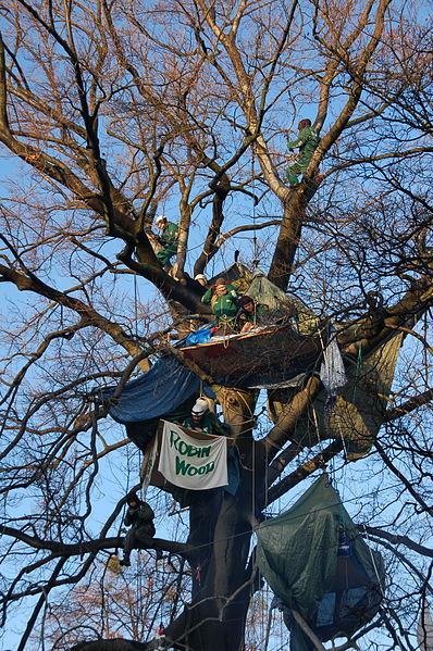 File:Baumbesetzung Buche RobinWood 2.jpg