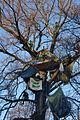 Baumbesetzung Buche RobinWood 2.jpg