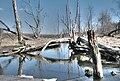 Beaver creek - panoramio - IV@no.jpg