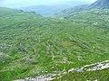 Beinn Liath Mhor - geograph.org.uk - 203490.jpg