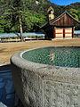 Beopjusa-Temple-Stay-Korea 808.jpg