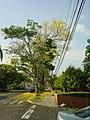 Betania, Panamá, Panama - panoramio - kalium.jpg