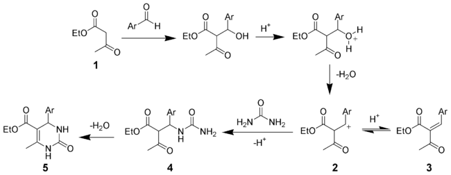 The mechanism of the Biginelli reaction