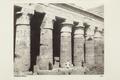 Bild från familjen von Hallwyls resa genom Egypten och Sudan, 5 november 1900 – 29 mars 1901 - Hallwylska museet - 91721.tif