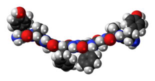 Space-filling model of Biphalin