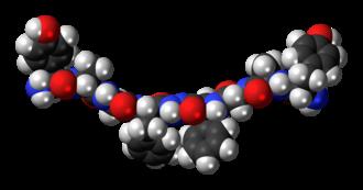 Biphalin - Image: Biphalin molecule spacefill