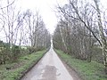Black Bank Lane - geograph.org.uk - 337391.jpg