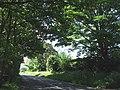 "Blidworth Lane (""Three Thorn Hollow"") south view - geograph.org.uk - 442147.jpg"