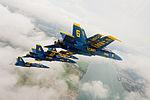 Blue Angels show 140902-N-WJ386-122.jpg