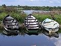 Boats at Breffni - geograph.org.uk - 825844.jpg
