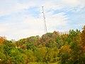 Boaz Cell Tower - panoramio.jpg