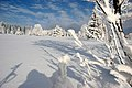 Boehmerwald Winter Mittag.jpg
