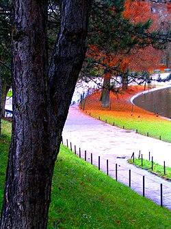 Rừng Vincennes