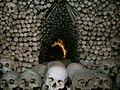 Bone Pile (2142690629).jpg