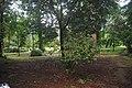 Botanic garden limbe140.jpg