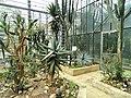 Botanischer Garten Freiburg - DSC06324.jpg