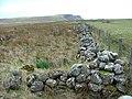 Boundary Wall in Bornesketaig - geograph.org.uk - 126886.jpg