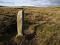 Boundary stone near Dry Bridge - geograph.org.uk - 621946.jpg