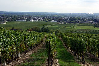 Bourgueil - A general view of Bourgueil