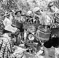 Boy Scouts bring in baskets of plums for weighing on the fruit-picking farm near Cambridge in 1944. D16210.jpg