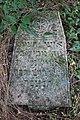 Briceni Jewish Cemetery 44.JPG