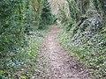 Bridleway, Athelhampton - geograph.org.uk - 1176655.jpg