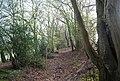 Bridleway NE of Burwash Weald (2) - geograph.org.uk - 1253559.jpg