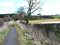Bridleway near Humble Knowe Farm - geograph.org.uk - 150220.jpg