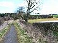 Bridleway near Humble Knowe Farm - geograph.org.uk - 150220.jpg