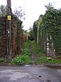 Bridleway off Castle Lane - geograph.org.uk - 2252150.jpg
