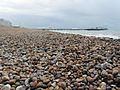 Brighton beach brighton pier.jpg