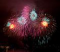 British Fireworks Championship 2009 11.jpg