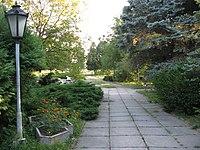 Briukhovychi Arboretum (5).jpg