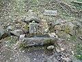 Brunnen im Wildpark Herborn - geo.hlipp.de - 35892.jpg