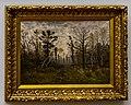 Buchholz-Lichter Wald im Herbstnebel DSC8844.jpg