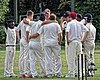 Buckhurst Hill CC v Dodgers CC at Buckhurst Hill, Essex, England 43.jpg