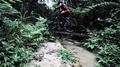 Bukit Kiara Mountainbiking.png