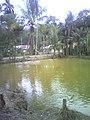Bukit Tandang, Bukit Sundi, Solok, West Sumatra, Indonesia - panoramio.jpg