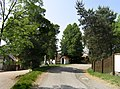 Bukovany, common.jpg