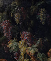 Bunches of Grapes around a Tree Trunk