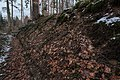 Burg Bermatingen-8719.jpg