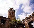 Burgruine Auerbacher Schloss 20.jpg